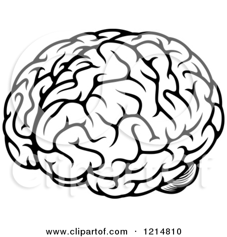 brain clipart black and white picture 122697 brain clipart black and white picture 122697 brain clipart black