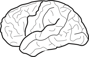 Brain clipart black and white. Clip art at clker