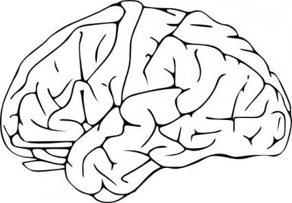 Brain clipart black and white. Clip art panda free