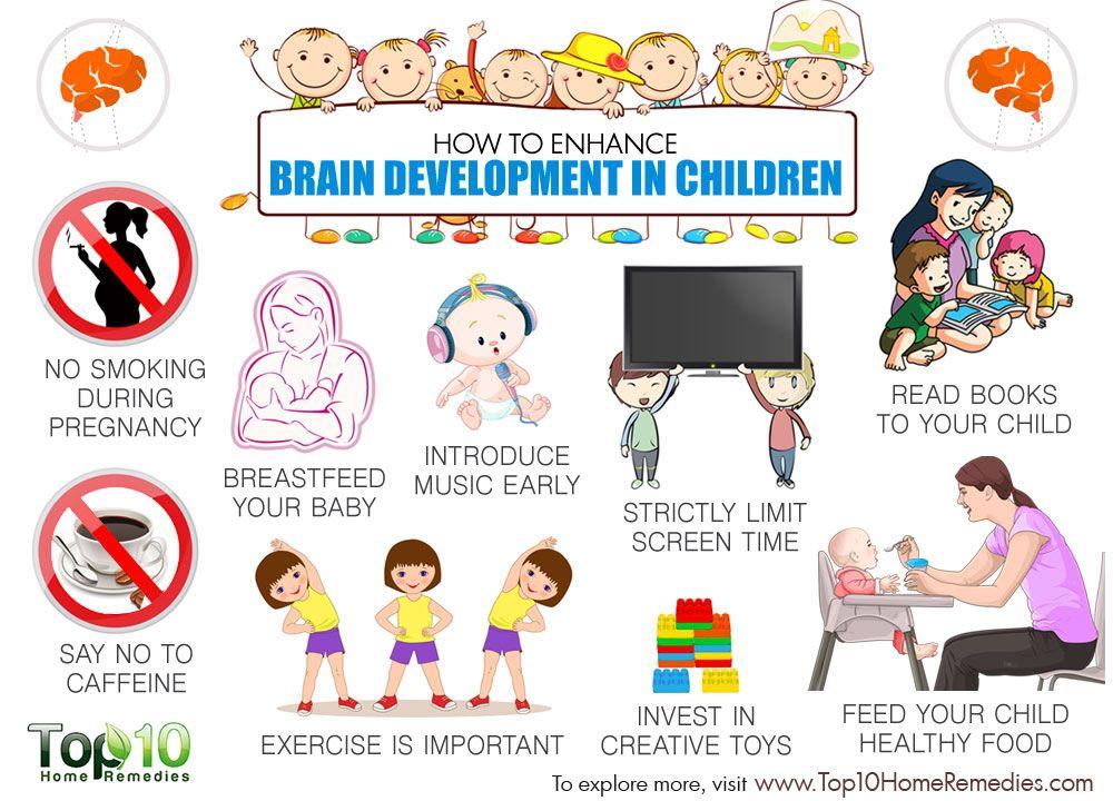 How to enhance in. Brain clipart brain development