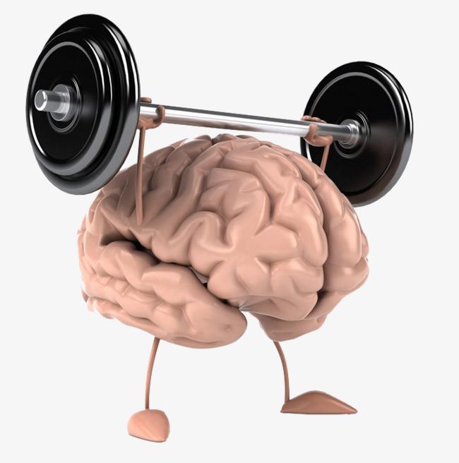 Brain clipart brain power. Weightlifting mind creative png