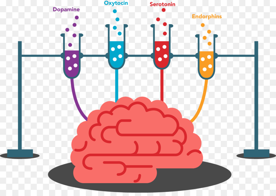 Training physical exercise memory. Brain clipart cognitive