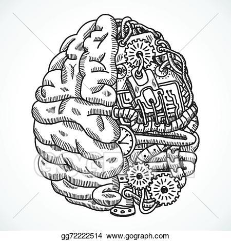 Clip art vector as. Brain clipart doodle