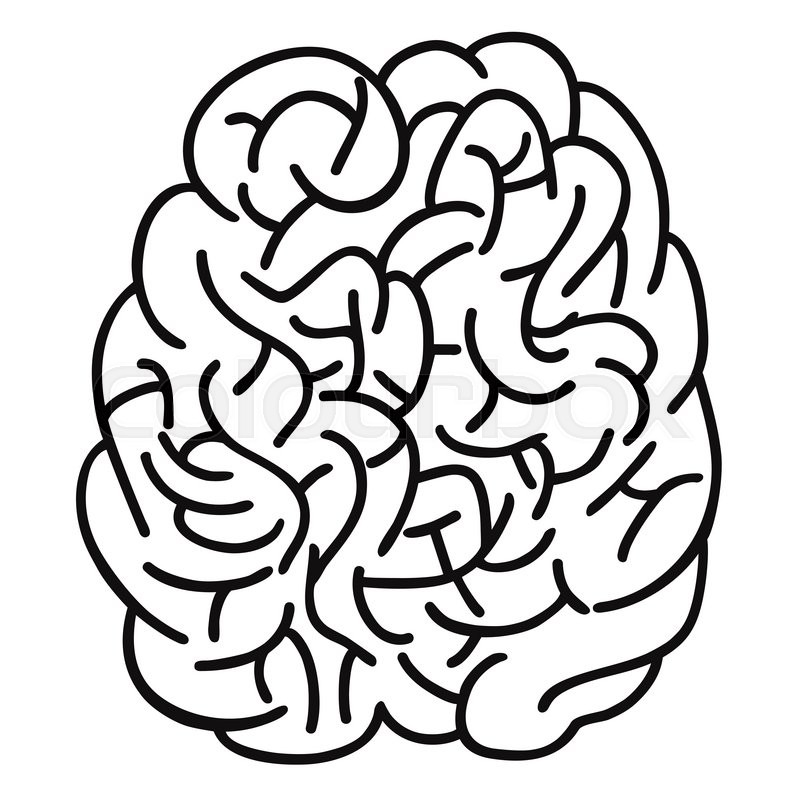 Brain clipart doodle. Outline drawing at getdrawings