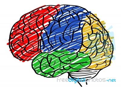 Brain doodle