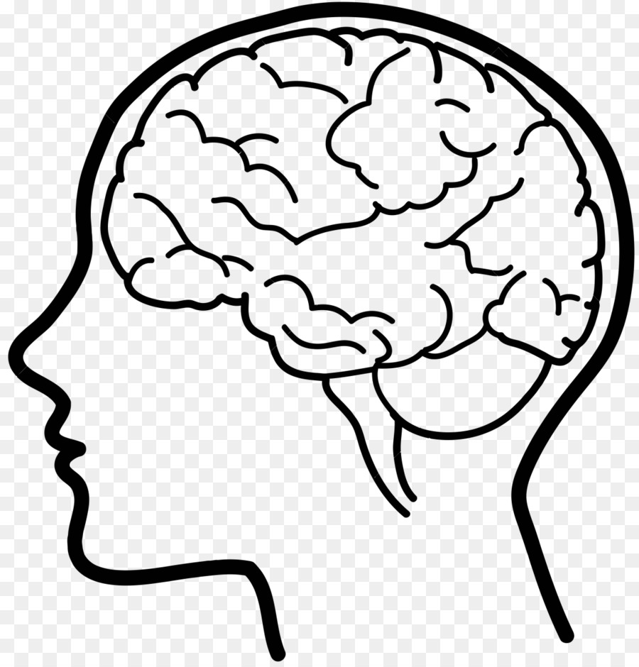 brain clipart human brain brain human brain transparent free for download on webstockreview 2020 brain clipart human brain brain human