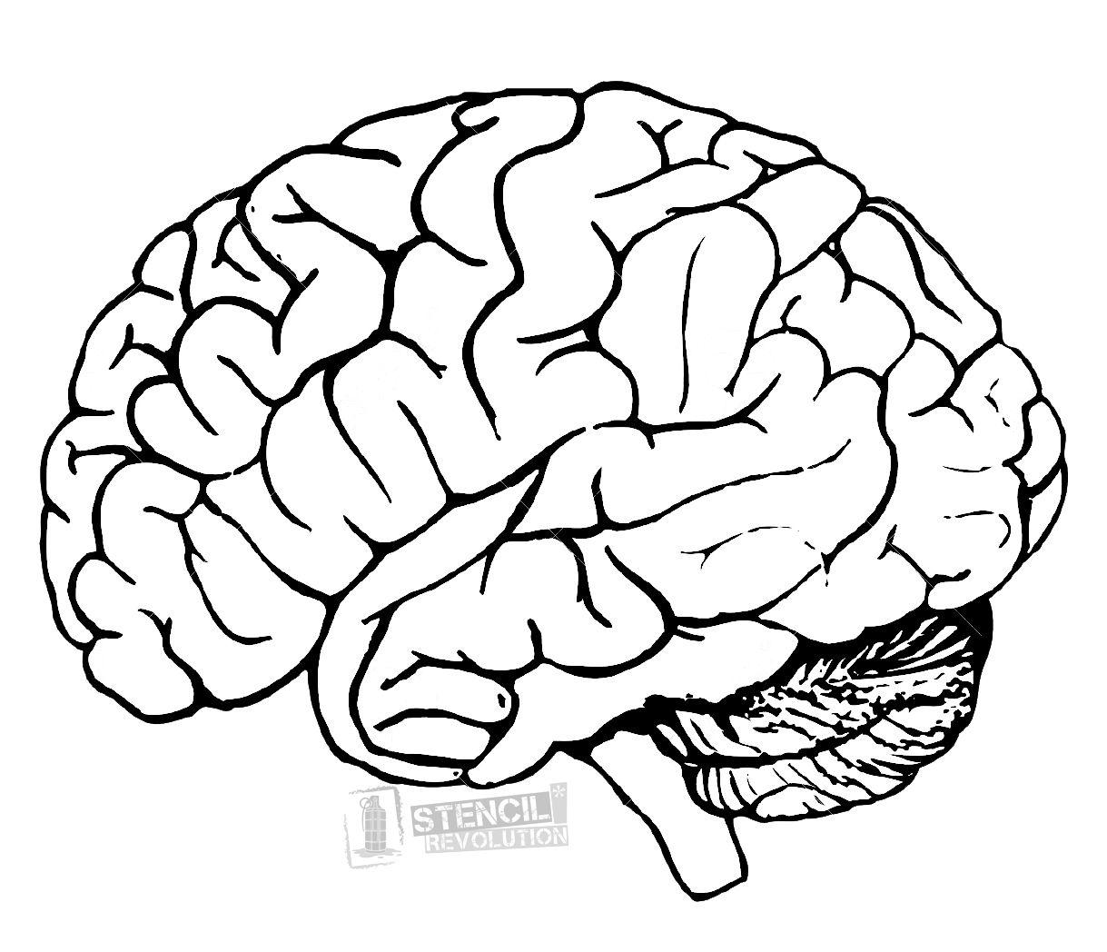 Brain clipart human brain. Stencil stencils and patches