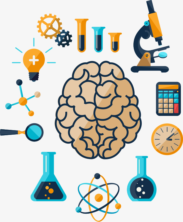 Flatten material research png. Brain clipart icon