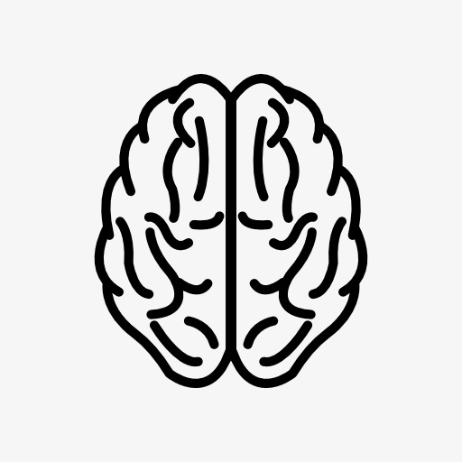 The human png image. Brain clipart icon