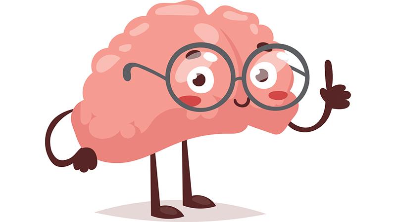 Psychology clipart smart brain. Transparent free download best