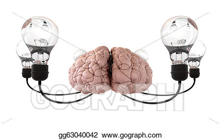 Brain clipart imagination. Drawing and lightbulb white