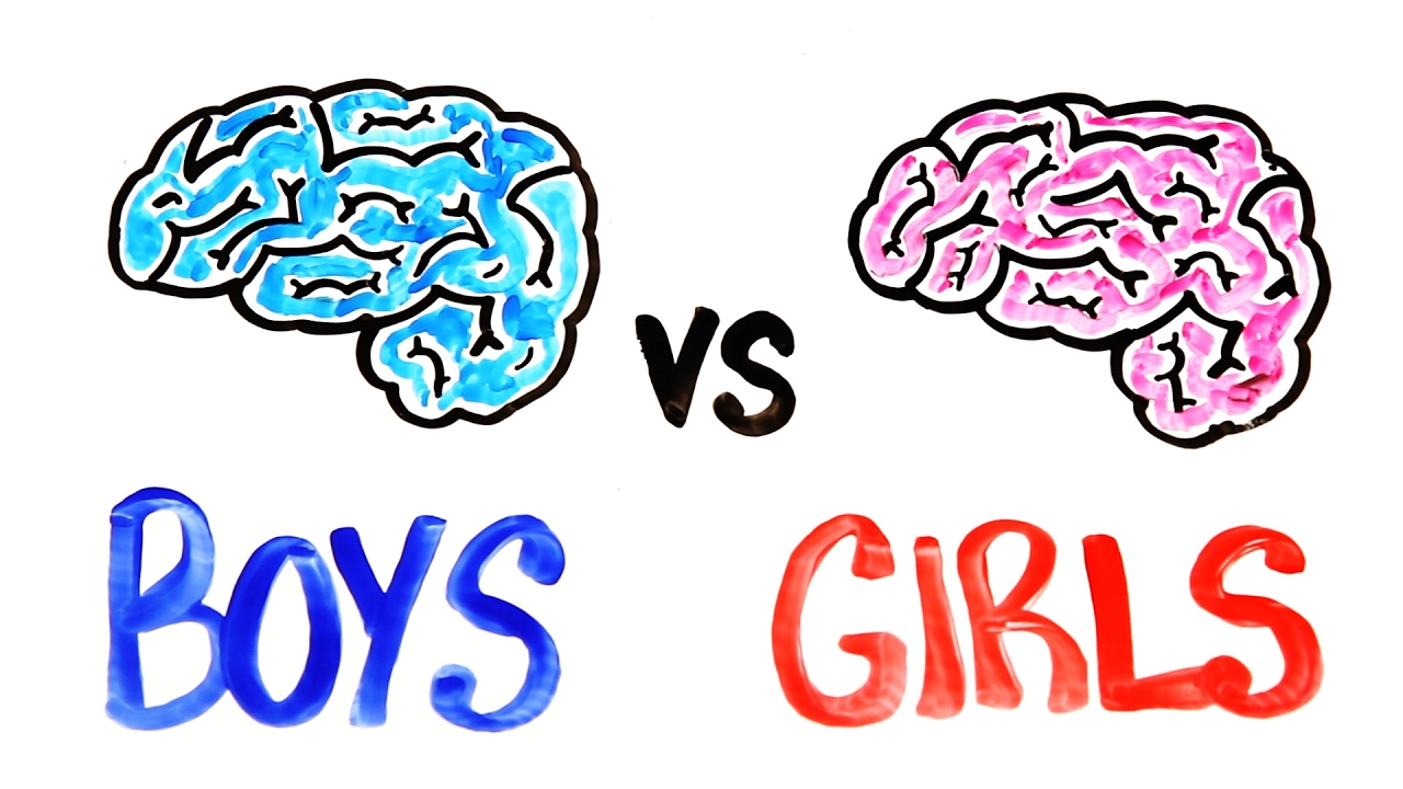 Brain clipart intelligence. Are boys smarter than