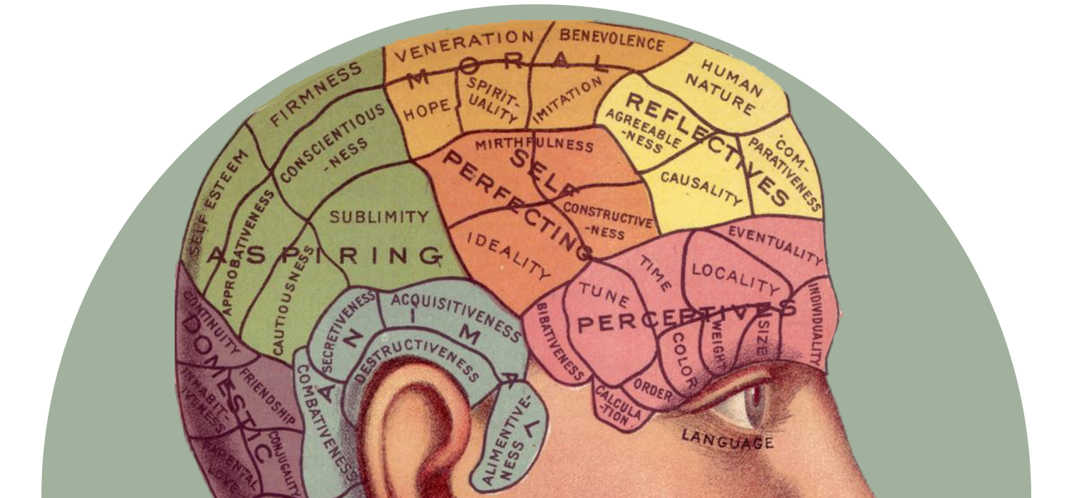 Hacks for supersonic learning. Clipart brain brain function