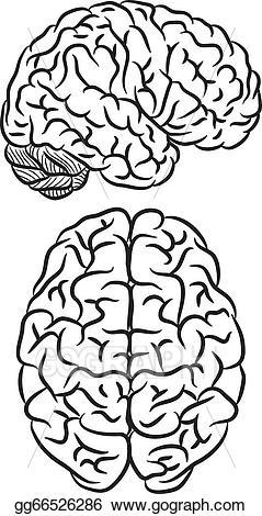 Brain clipart silhouette. Vector illustration eps gg