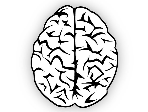 At getdrawings com free. Brain clipart silhouette
