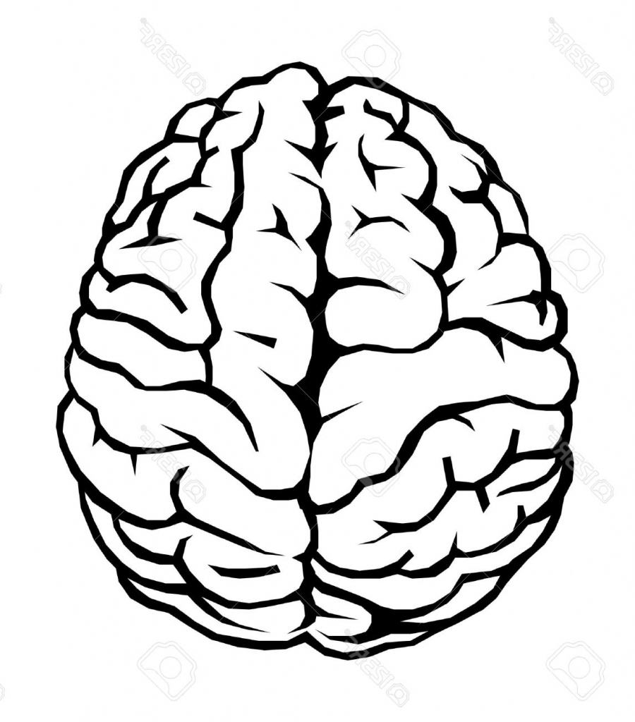 Brain clipart simple. Drawing profile pencil and