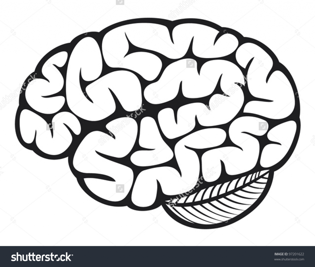 Drawing of at getdrawings. Brain clipart simple
