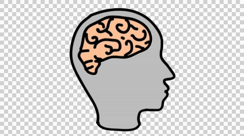 Brain clipart transparent background. Human line drawing animation
