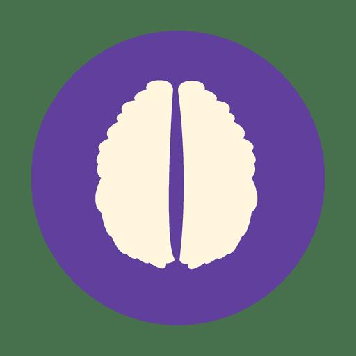 Brain vector png. Flat human sign transparent