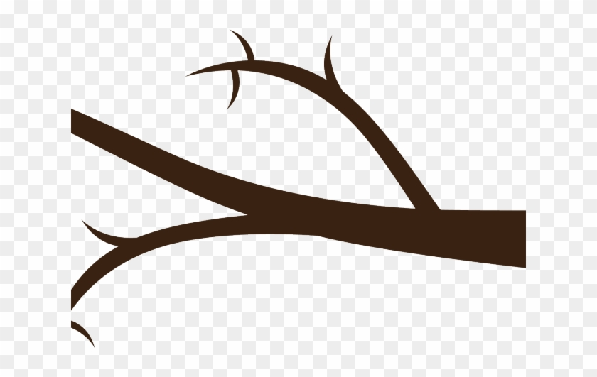 One tree png . Branch clipart