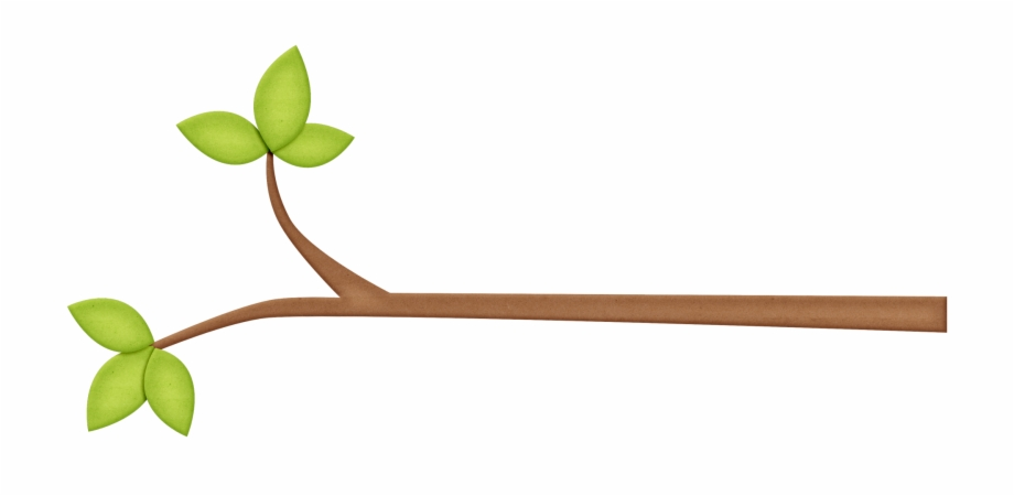 Tree png transparent . Branch clipart