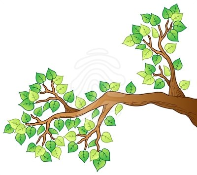 Tree . Branch clipart