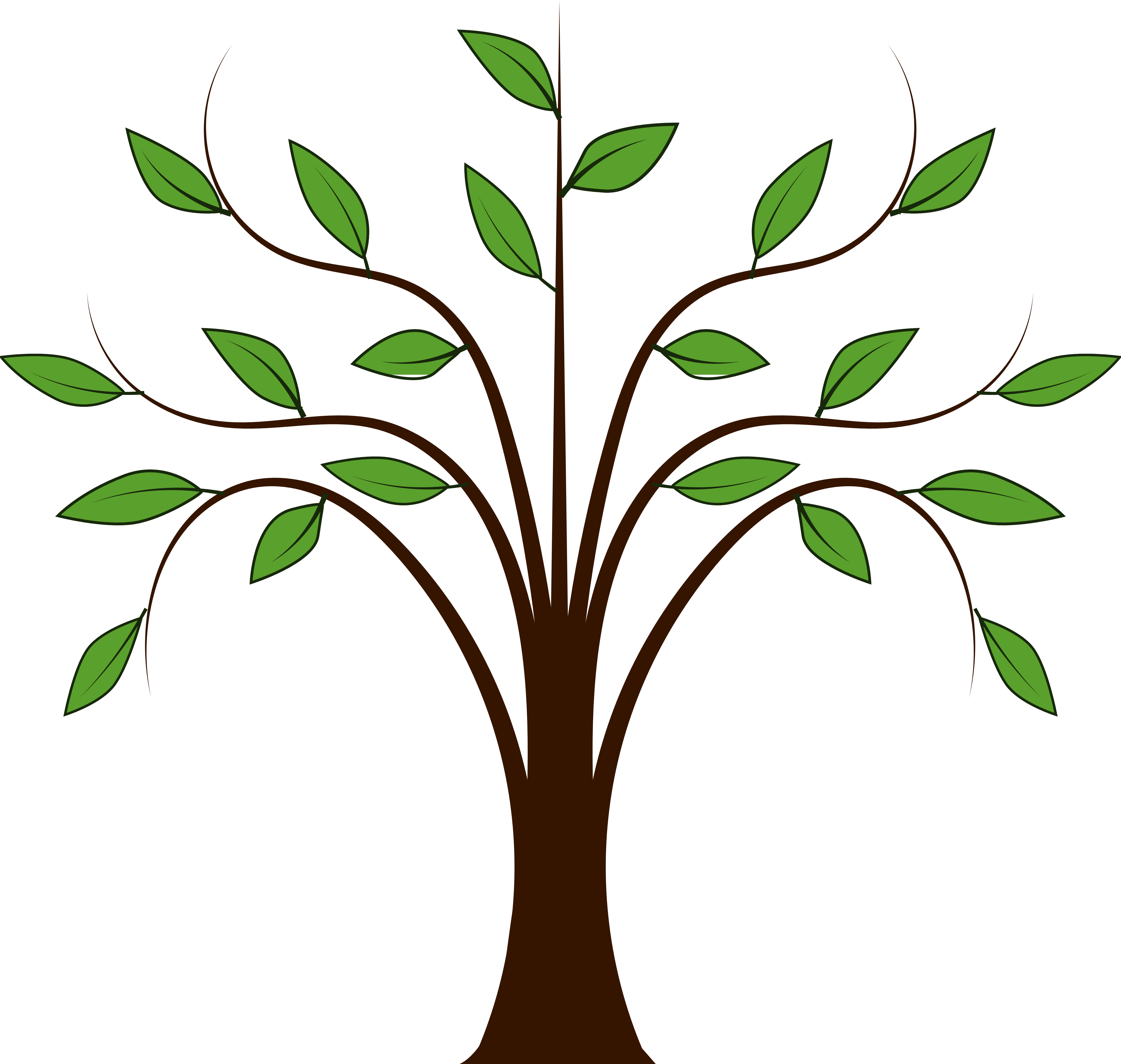 woodland clipart tree growth