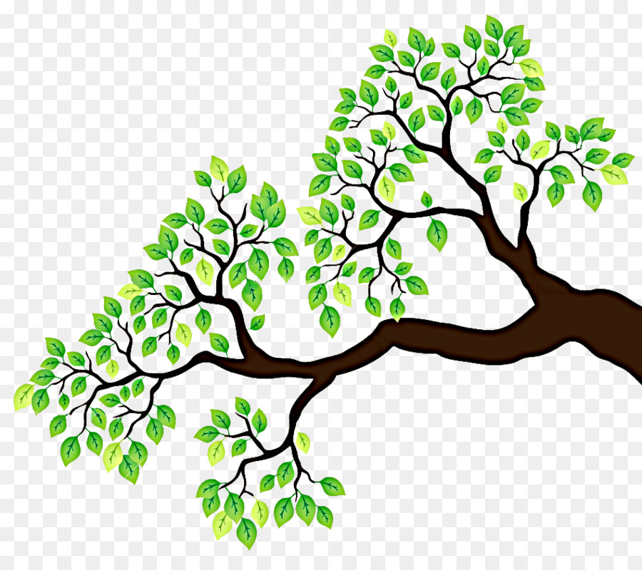 3 clipart branch. Tree drawing clip art