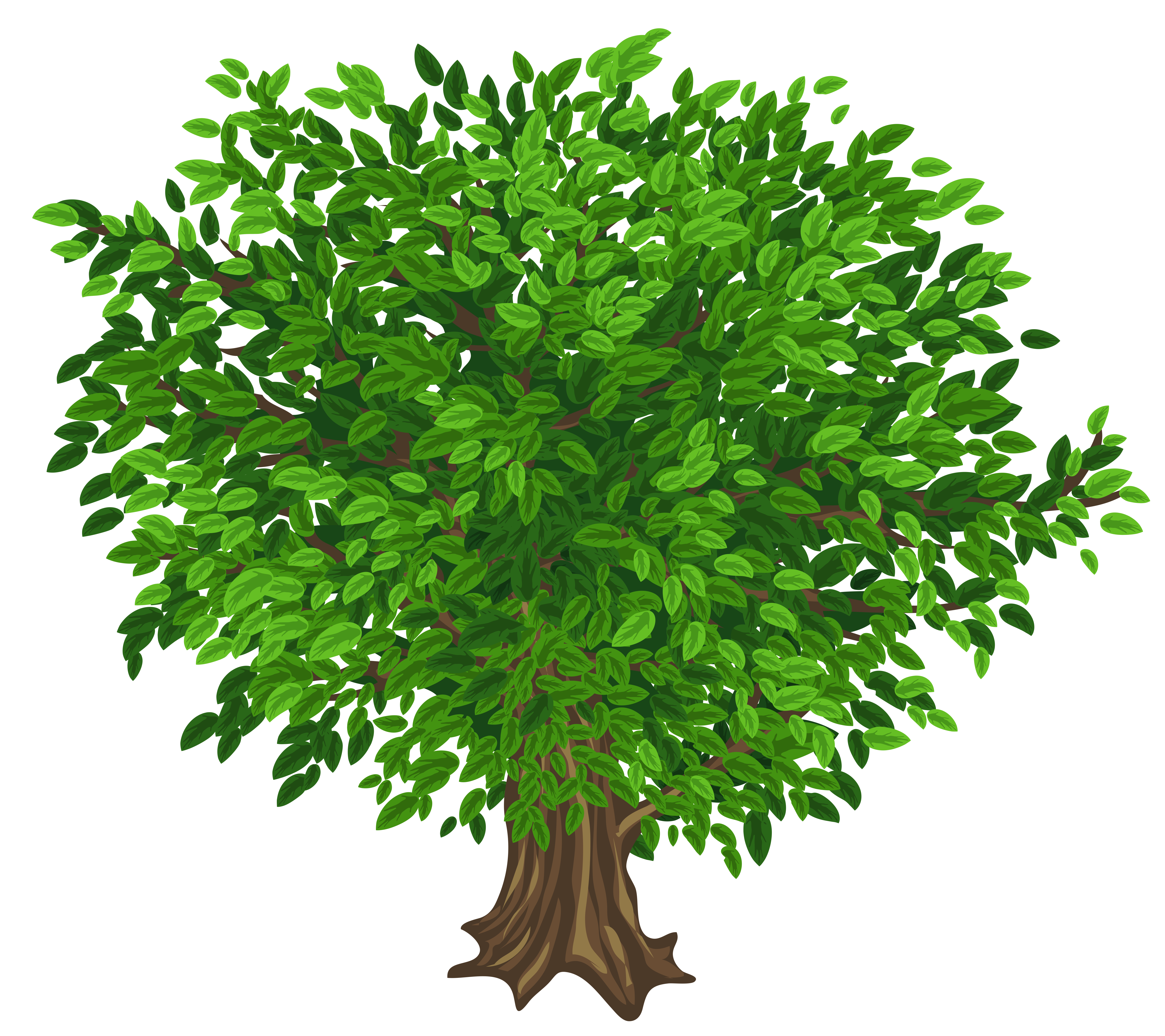 collection of high. Tree clipart transparent background