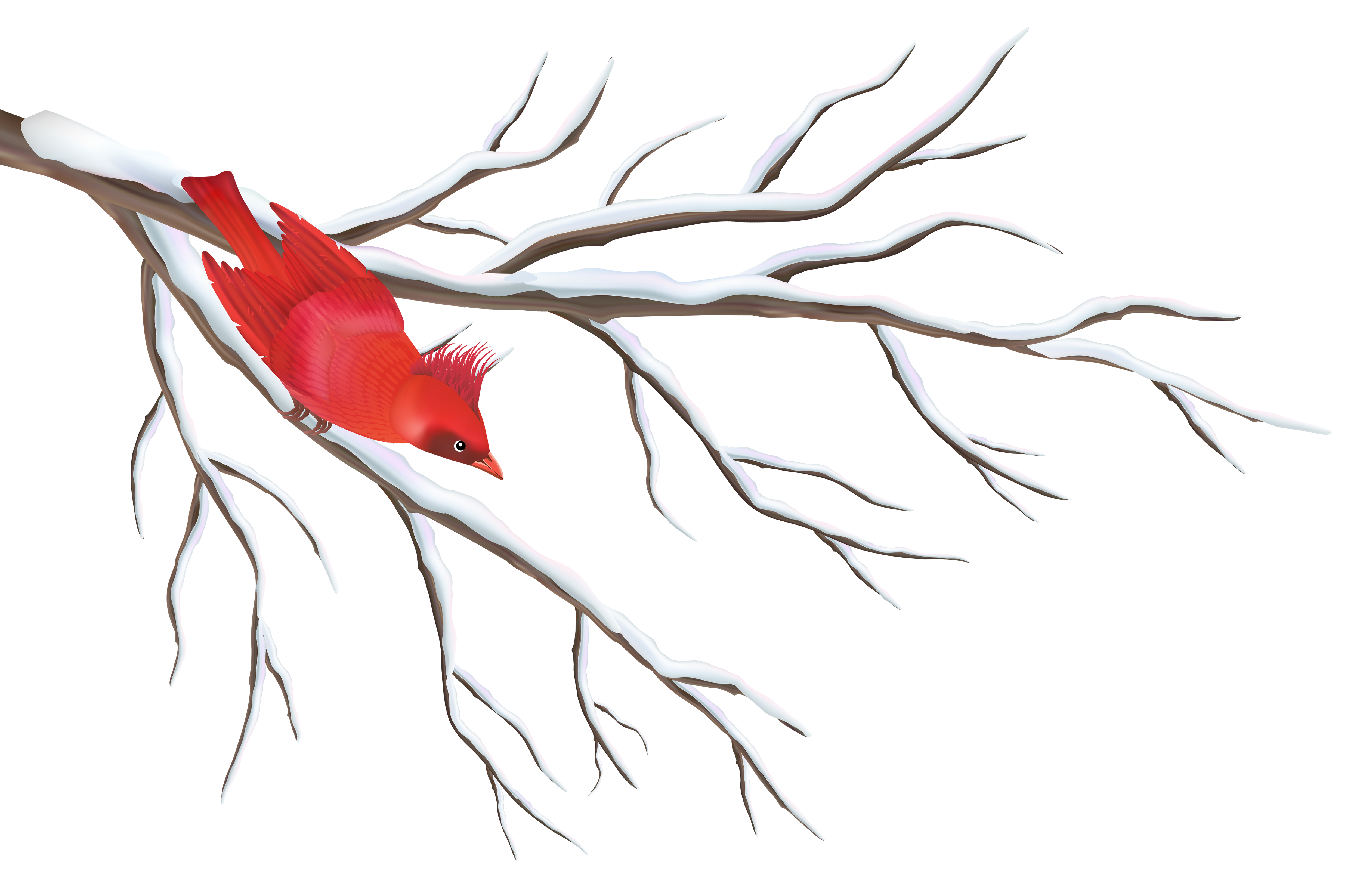 Branch with bird png. Clipart heart winter