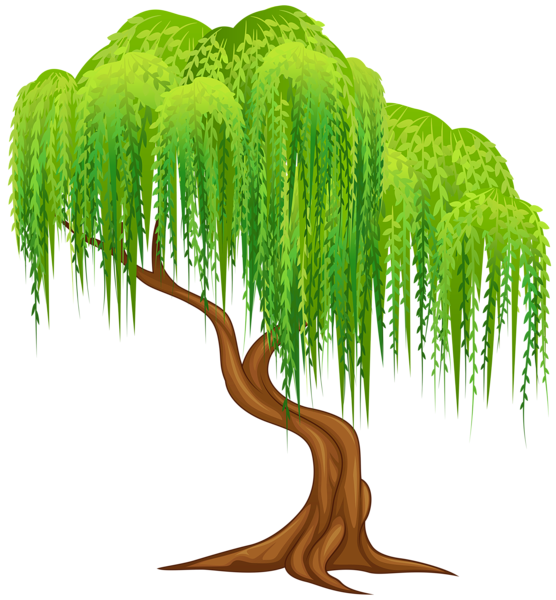 Willow transparent png clip. Tree clipart lake
