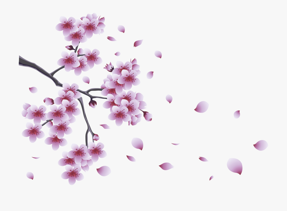 Spring with tree flowers. Floral clipart branch