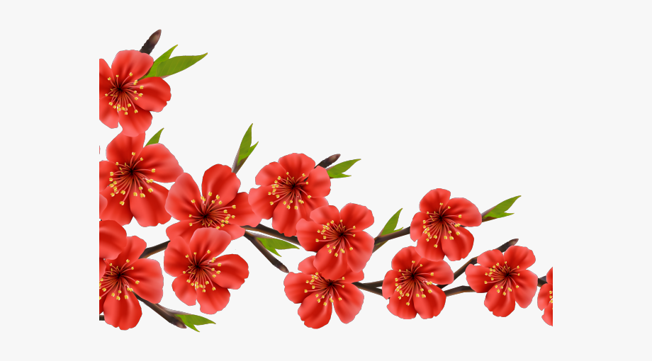 Flower red cherry blossom. Floral clipart branch