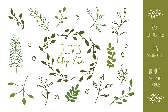 Olive branches clip art. Branch clipart font