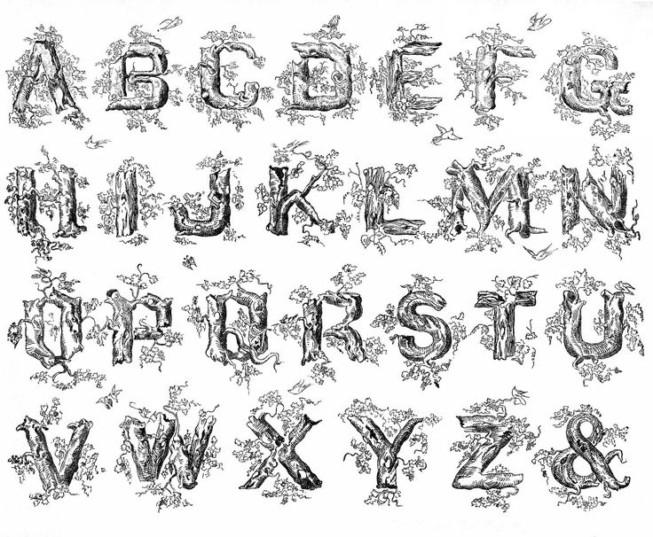 best affection images. Branch clipart font
