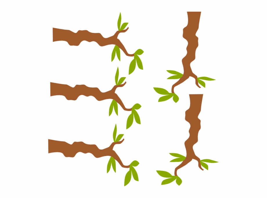 Branch clipart jungle. Clip art royalty free