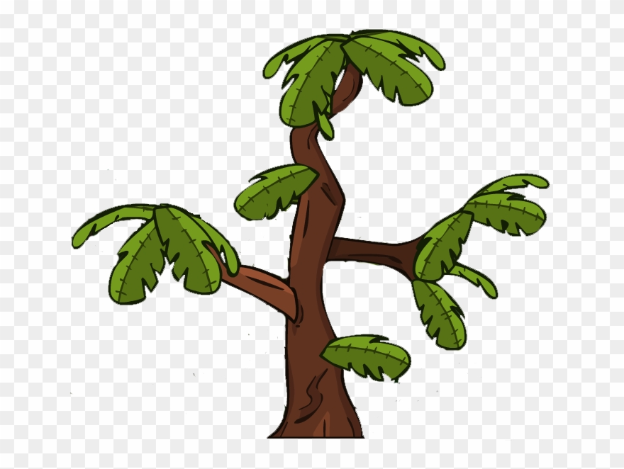 Tree png trees . Branch clipart jungle