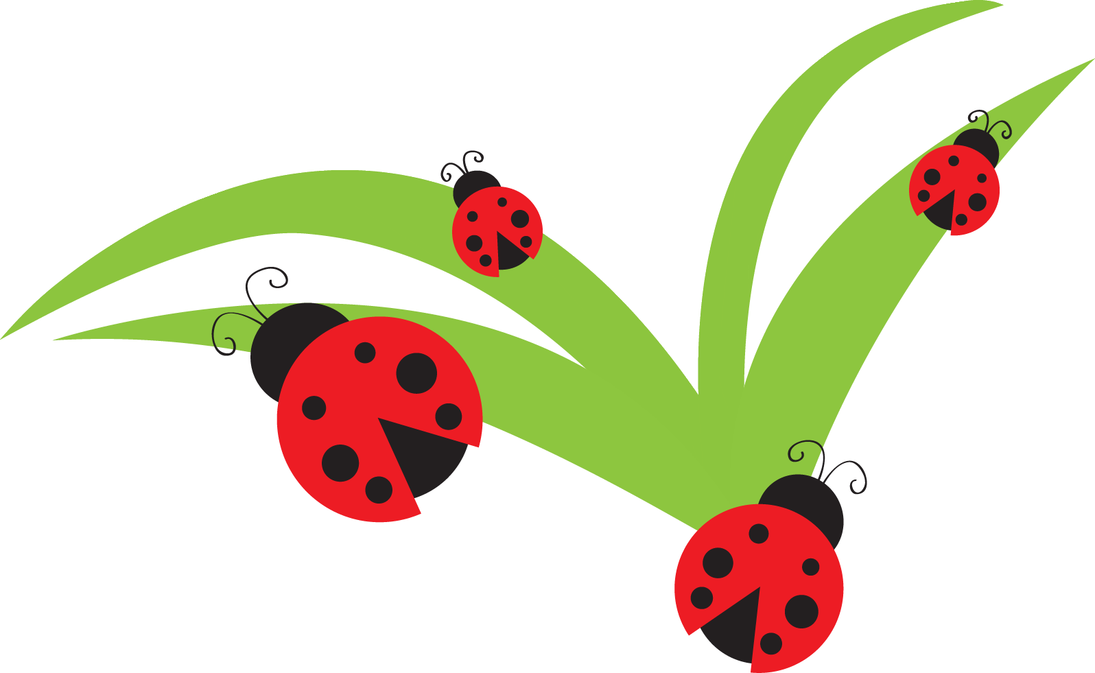 Bug ladybug lady clip. Clipart flowers insect