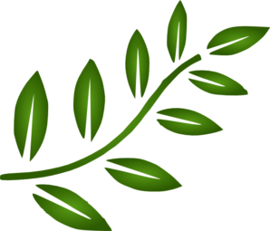 Branch clipart leave clipart. Free leaves cliparts download