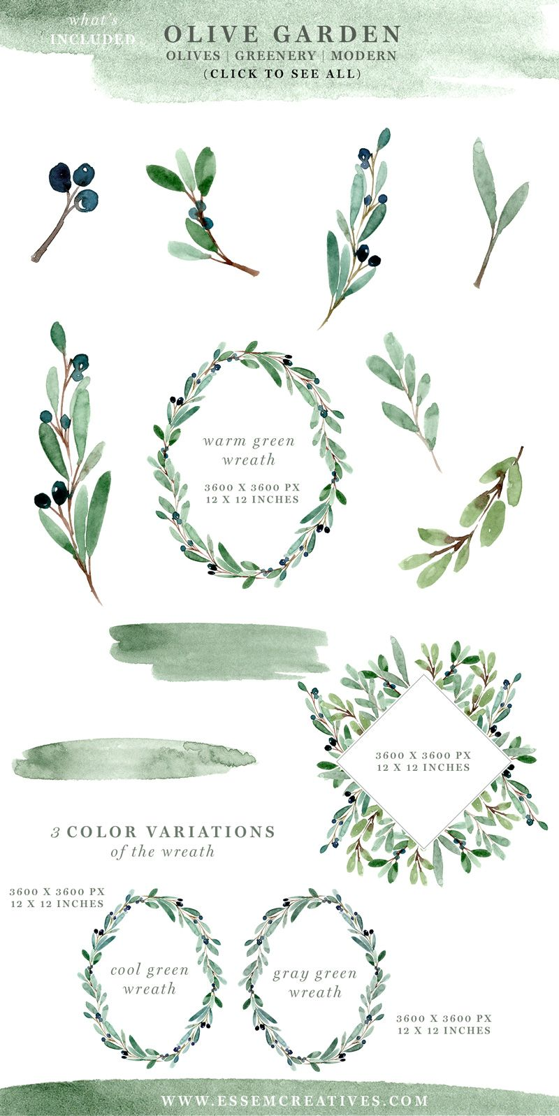 Branch clipart leave clipart. Watercolor olive leaves wreath