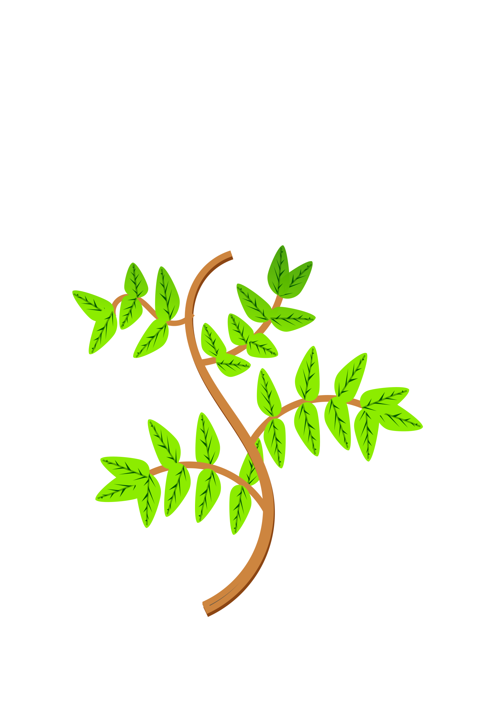 Leaves and branches big. Branch clipart leave clipart