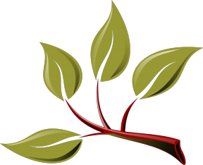 Free leaves cliparts download. Branch clipart leave clipart
