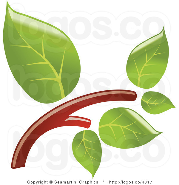 Branch clipart leave clipart. Branches with leaves panda