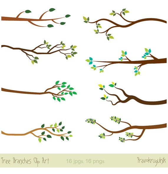 best trees images. Branch clipart line art