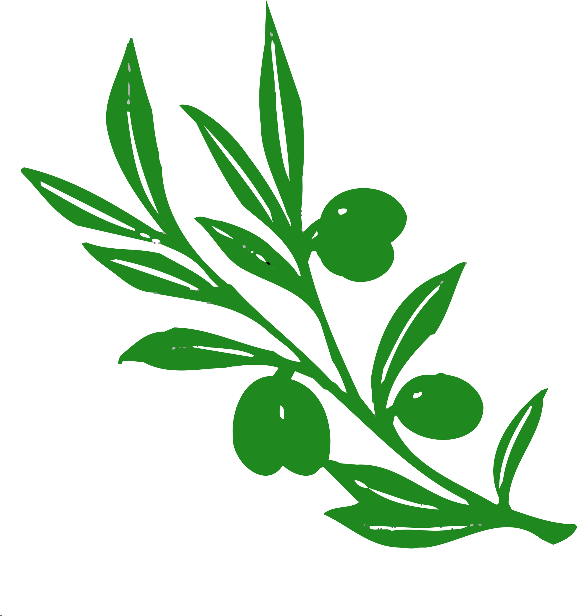 Branch clipart olive branch. Tree big image png