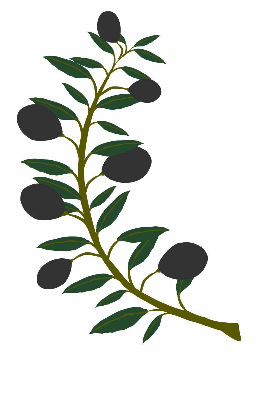 Black clip art tree. Branch clipart olive branch