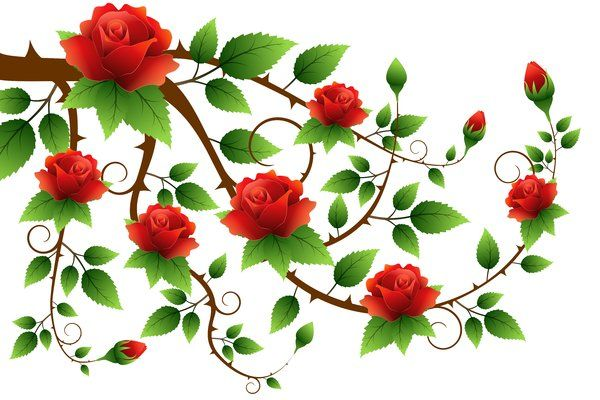 Floral graphics free stock. Clipart roses branch