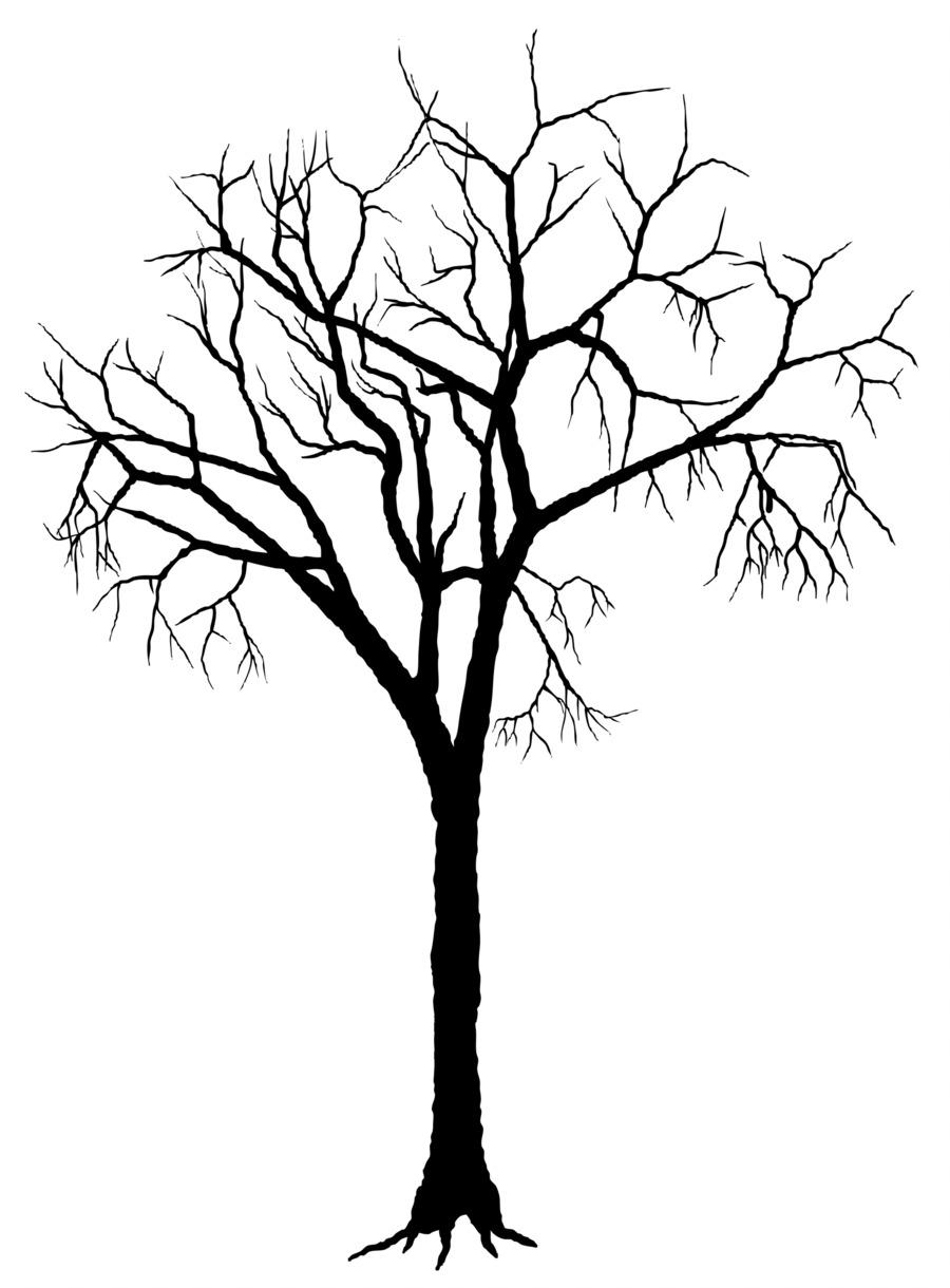 Branch clipart sanga. Tree silhouette deciduous clip