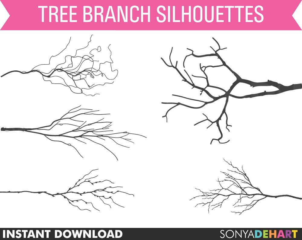 Branches off sale clip. Branch clipart tree limb