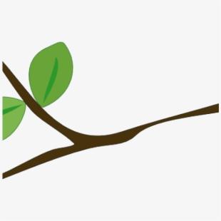Branch clipart wood branch. Tree la rama de
